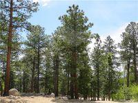 Home for sale: Aspen Turn, Buena Vista, CO 81211