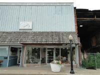 Home for sale: 449 W. Main St., Bushnell, IL 61422