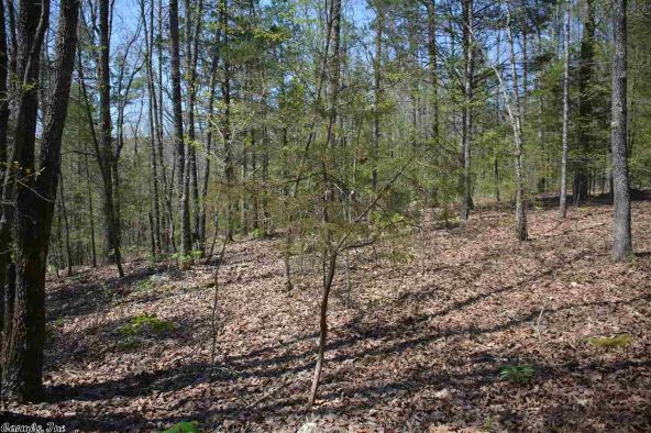 9 Ac Brownsville Rd., Greers Ferry, AR 72067 Photo 8