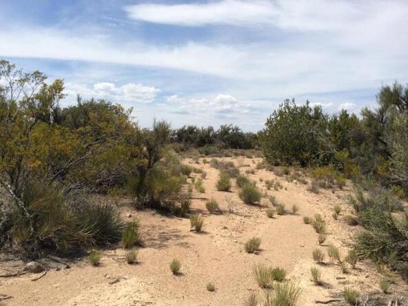 6450 N. Canyon Rd., Rimrock, AZ 86335 Photo 4