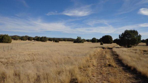 44201 N. Crazy Coyote Way, Seligman, AZ 86337 Photo 36
