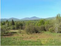 Home for sale: Lot #2 Off Of Loop Rd., North Troy, VT 05859