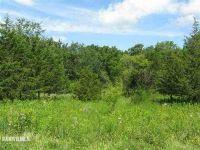 Home for sale: 11 Cemetery Ridge, Galena, IL 61036