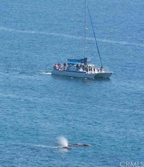 31755 S. Coast Hwy. #410, Laguna Beach, CA 92651 Photo 20