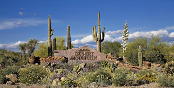 42012 N. 101st Way, Scottsdale, AZ 85262 Photo 81