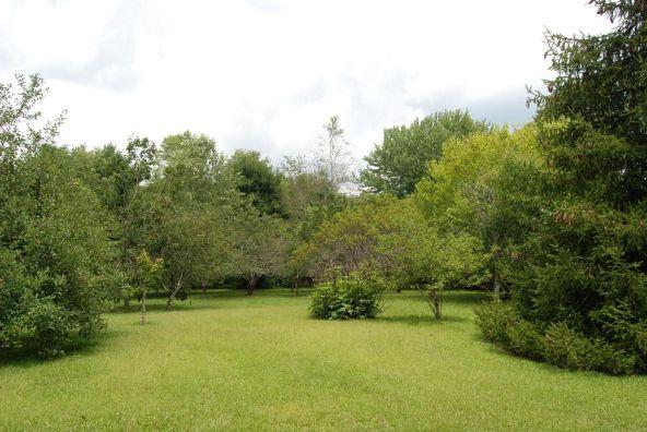 70 County 944 Rd., Mentone, AL 35984 Photo 56