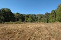 Home for sale: 124 Wolf Creek Rd., Kingston, TN 37763