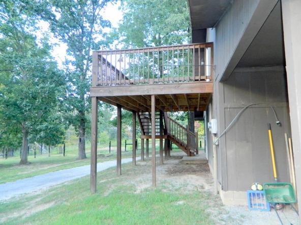 526 County Rd. 139, Bryant, AL 35958 Photo 138