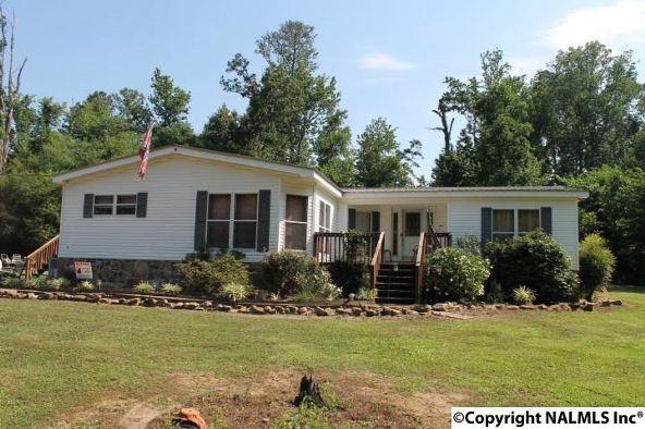 1210 County Rd. 23, Geraldine, AL 35974 Photo 31