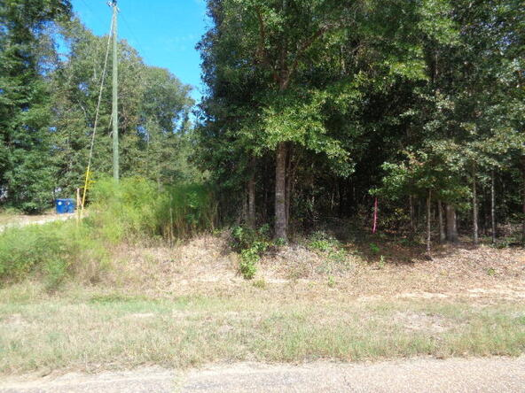 15.6+-Ac Johnny Murphy Rd., Dothan, AL 36301 Photo 2