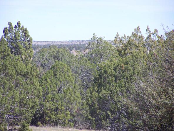 9262 W. Bandera Pass, Williams, AZ 86046 Photo 8