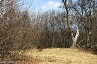 Home for sale: 267 South Branch Mountain Rd., Moorefield, WV 26836