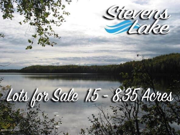 21268 W. Bow Tie Loop, Willow, AK 99688 Photo 24