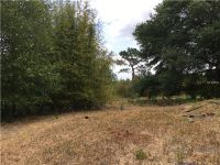 Home for sale: 10821 Sportsman Trail, Lakeland, FL 33809