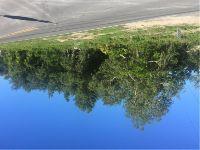 Home for sale: 12521 Hagar Dr., New Port Richey, FL 34654
