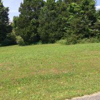 Home for sale: 47 Fleetwood Dr., Jackson, TN 38305