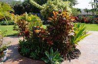 Home for sale: 77-220 Hoomohala Rd., Kailua-Kona, HI 96740