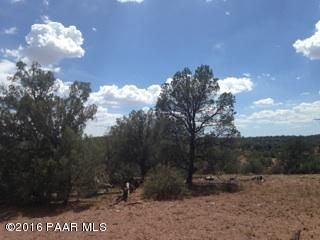 171 Friendship/Conwayden, Ash Fork, AZ 86320 Photo 7