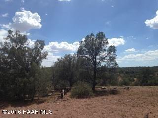 171 Friendship/Conwayden, Ash Fork, AZ 86320 Photo 29