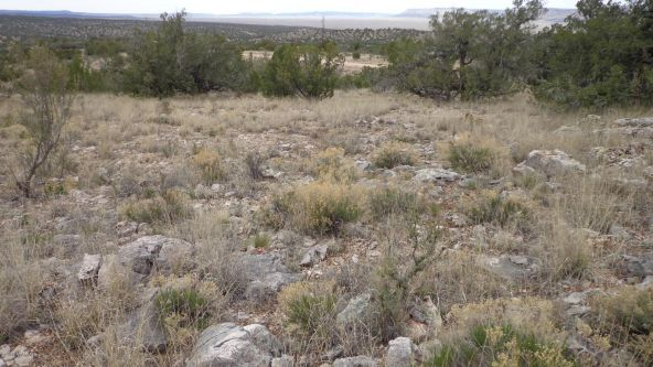952 Bridge Canyon Unit 5 Lot 952, Seligman, AZ 86337 Photo 12