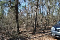 Home for sale: 1 Acre Wriley Rd., McIntyre, GA 31054