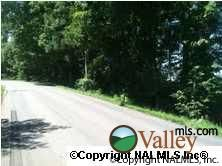 Snodgrass Rd., Scottsboro, AL 35768 Photo 3
