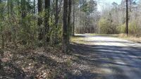 Home for sale: Lot 13 Towaliga South, Forsyth, GA 31029