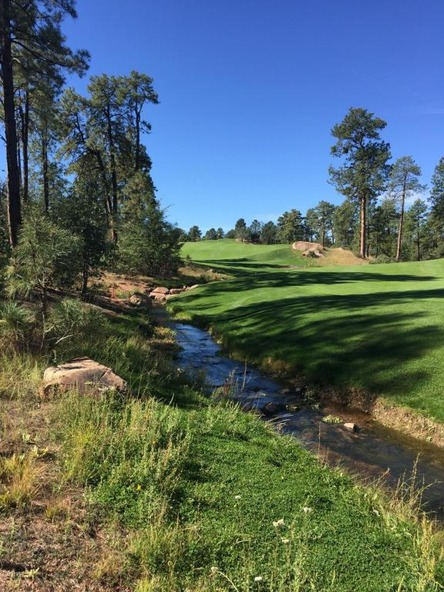 602 S. Pine Strm Stream, Payson, AZ 85541 Photo 9