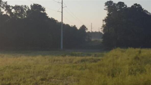 Tbd County Rd. 40, Coffee Springs, AL 36318 Photo 11