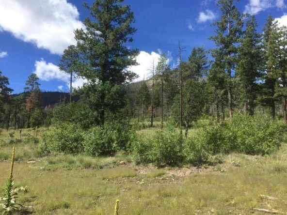 22 Cr 2074, Alpine, AZ 85920 Photo 2