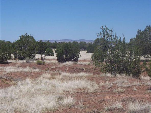 56731 N. Potrero Parkway, Seligman, AZ 86337 Photo 15
