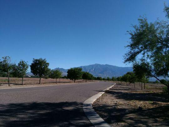 6520 W. Palo Verde Ln., Pima, AZ 85543 Photo 3