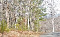 Home for sale: #18 Poplar Ridge, Hiawassee, GA 30546