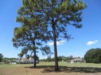 Home for sale: Lot 195 Chestnut Ridge Rd., Ridge Manor, FL 33523