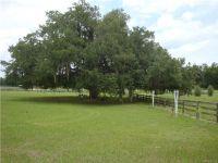 Home for sale: 9849 S. Quarterhorse Avenue, Floral City, FL 34436
