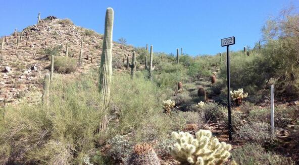 21113 N. 112th St. #1722, Scottsdale, AZ 85255 Photo 12