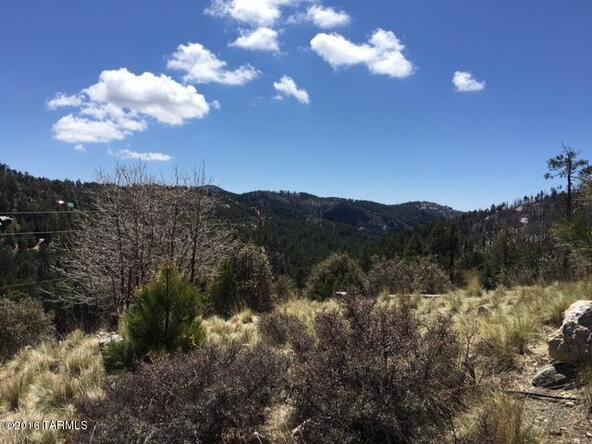 11179 E. Upper Goat Hill, Mount Lemmon, AZ 85619 Photo 4