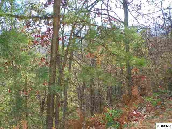 Lot 9 Enclave Park Way, Gatlinburg, TN 37738 Photo 3