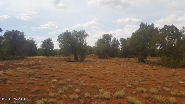 2075 Parker Ranch Rd., White Mountain Lake, AZ 85912 Photo 9