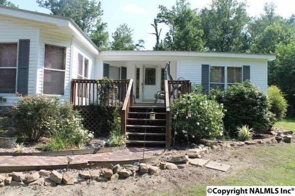1210 County Rd. 23, Geraldine, AL 35974 Photo 32