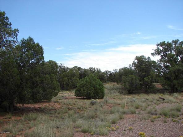 262 County Rd. 9215, Concho, AZ 85924 Photo 33