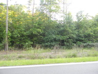 Home for sale: 0 Deerwood Cir., Stapleton, GA 30823