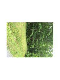 Home for sale: 0 Flowery Branch Rd., Kingston, GA 30145