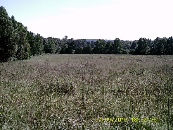 432 Cr 3355, Clarksville, AR 72830 Photo 25
