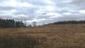 27.55 Acre State Hwy. 32, Sheboygan Falls, WI 53085 Photo 5
