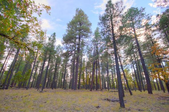 8100 W. Dk Ranch Rd., Flagstaff, AZ 86005 Photo 30