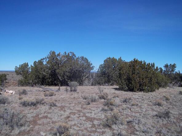 5301 S. Lariat Rd., Williams, AZ 86046 Photo 7