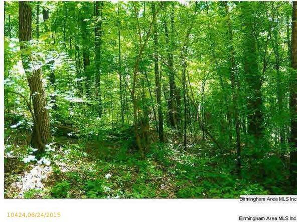 422 Lakeview Crest Dr., Pell City, AL 35128 Photo 1