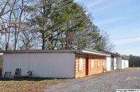 Home for sale: 7420 Alabama Hwy. 69, Guntersville, AL 35976