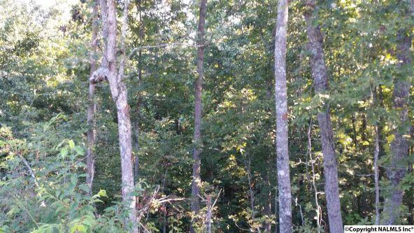 1088 County Rd. 788, Ider, AL 35981 Photo 2